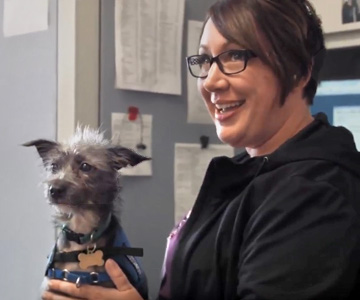 Sammy loves his work at Good Samaritan Regional Medical Center in Corvallis, Oregon.