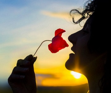 Woman smelling flower at sunset