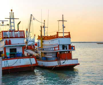 A fleet of red, white and orange fishing boats.