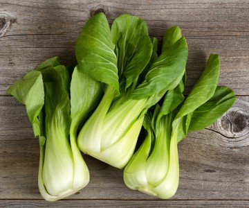 Pick of the month bok choy 308 CO