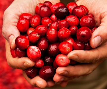 pick-of-the-month-cranberries-CO