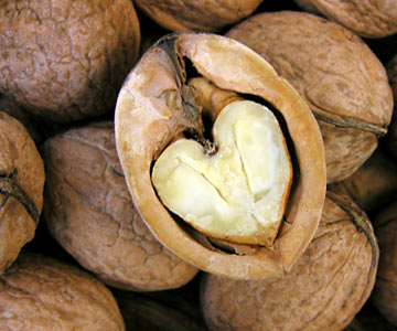 A cracked open nut with a heart-shaped walnut inside.