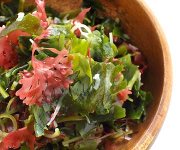Sea lettuce and purple laver are edible, nutritious kinds of seaweed.